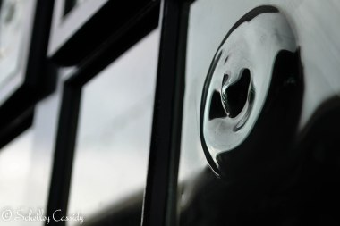 An unusual knob on a door in Dublin, Ireland.