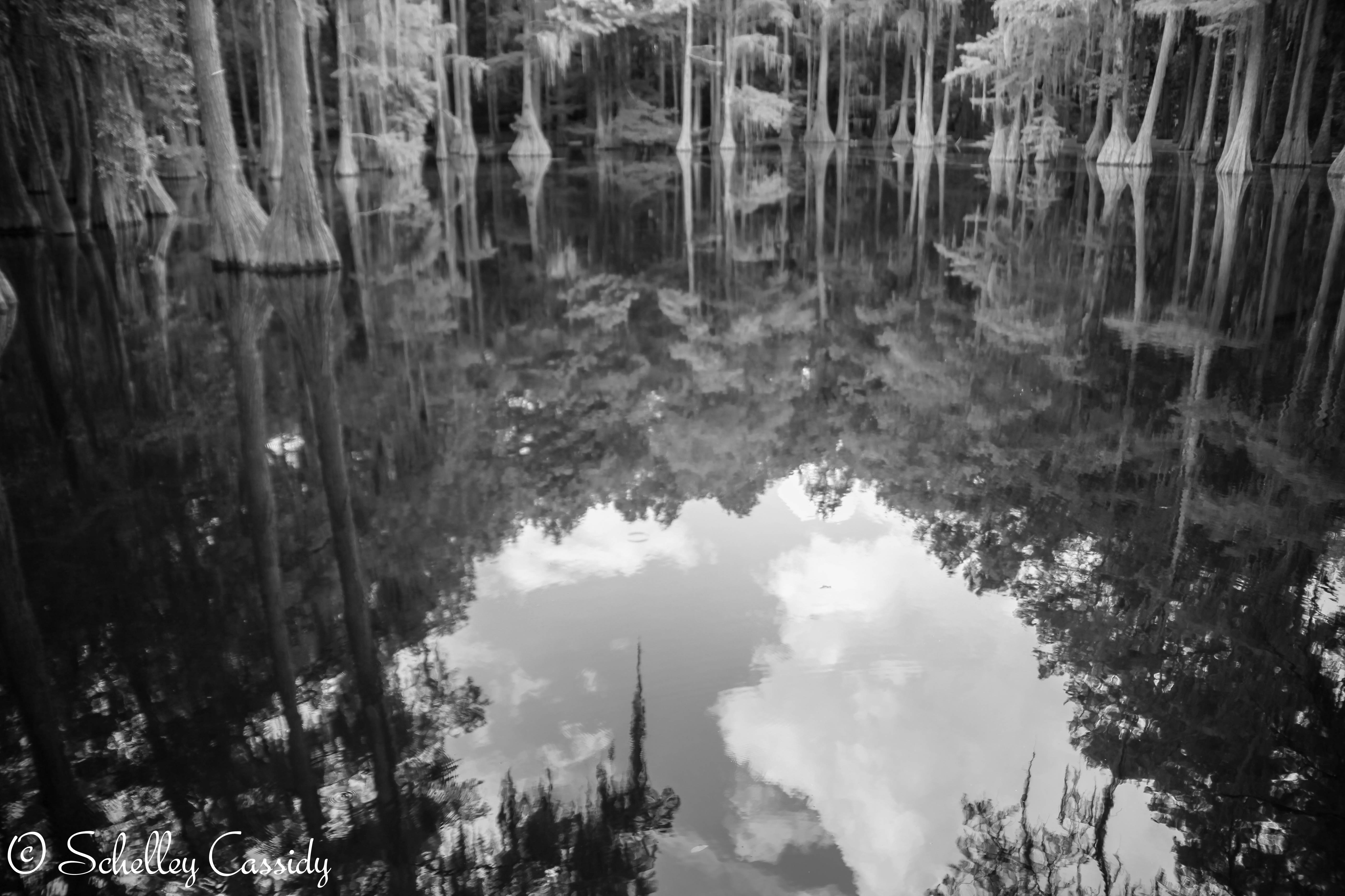 Water Reflection Photography Black And White Water Reflectio...
