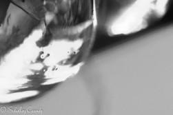 2013_08_15_9999_46